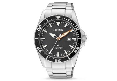 Citizen horlogeband BN0100-51E