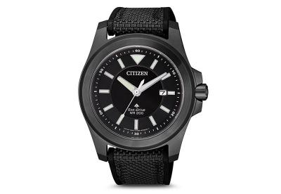 Citizen horlogeband BN0217-02E