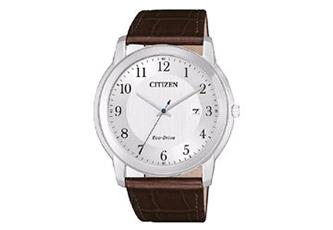 Citizen horlogeband AW1211-12A