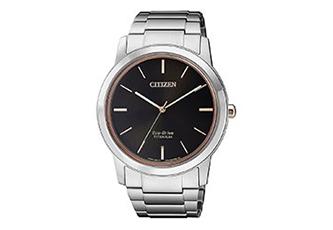 Citizen horlogeband AW2024-81E