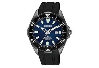 Citizen horlogeband BN0205-10L
