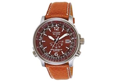 Citizen horlogeband AS2031-06W